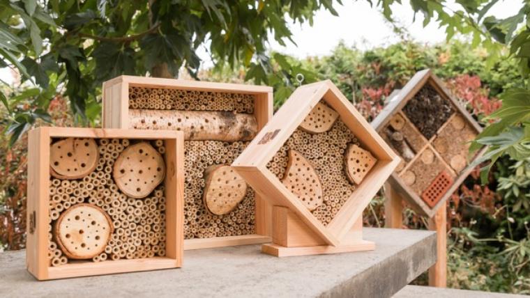 Sociale onderneming Bijenhotelkopen.nl opent eigen werkplaats in Overloon
